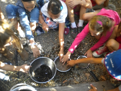 Exploring different types of soil